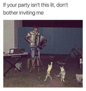 Lit Party